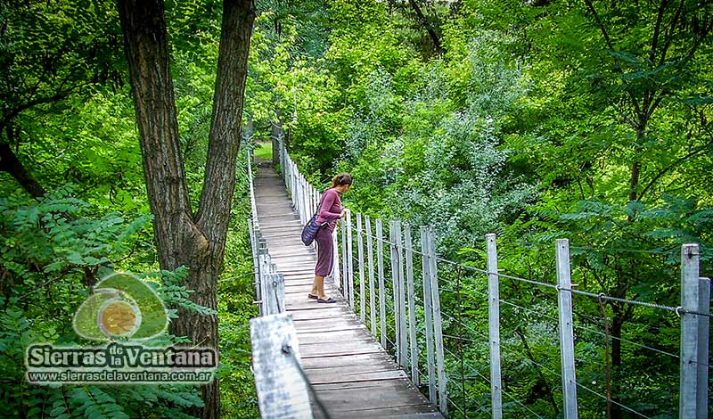Puente colgante en Sierra de la Ventana