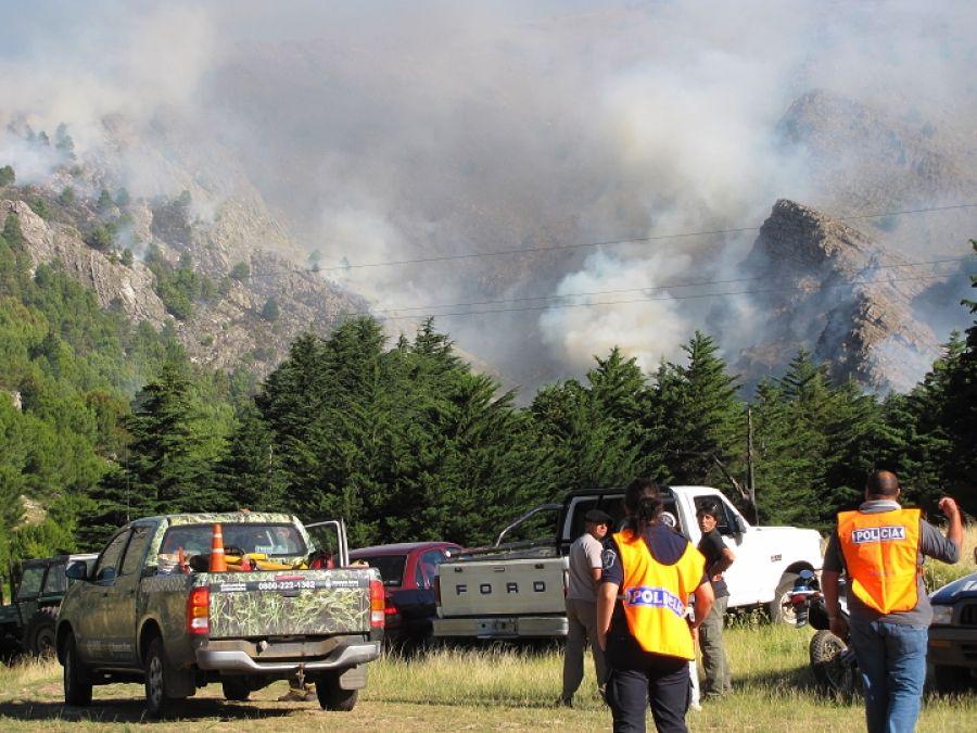 Incendio declarado en el parque tornquist